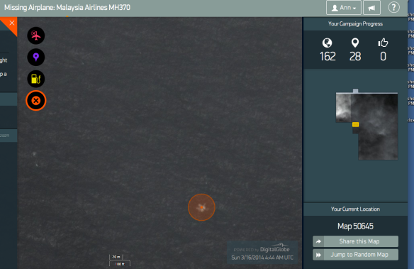 My tag on the Tomnod photo.